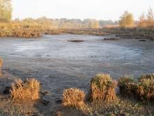 Regen niet voldoende voor problemen Wierdenseveld