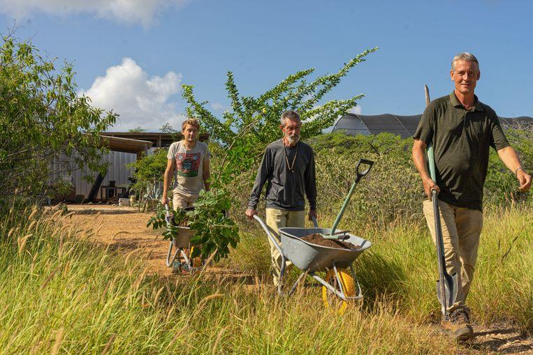 Vrijwilligers helpen Johan van Blerk (rechts) met het planten van jonge nieuwe bomen. Beeld Stephan Kogelman