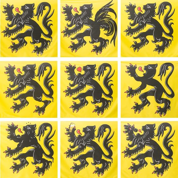 De negen nieuwe Vlaamse vlaggen
