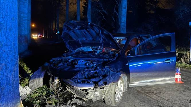Wagen crasht tegen boom langs Dudzelesteenweg