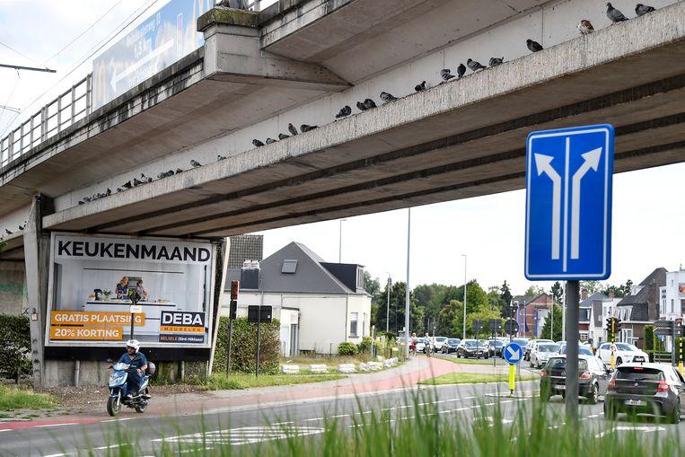 Voor de weringsnetten aan de spoorwegbrug werden bevestigd, stond de plaats er om bekend dat duiven er massaal samen troepten.