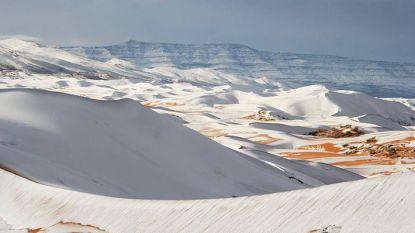 Unieke beelden van sneeuw in Sahara