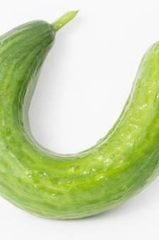 Hierom is het afkeuren van afwijkende groente en fruit onnodig