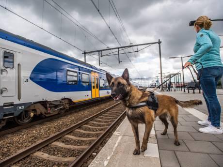 Grote controle op spoor Arnhem en Nijmegen: 'veel coke en ketamine'