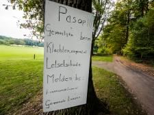 Alleeweg in De Lutte gevaarlijk voor fietsers of een weg als zoveel andere?
