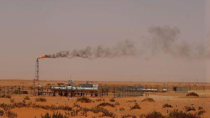 """""""Massale investeringen olieconcerns niet compatibel met klimaatakkoord van Parijs"""""""