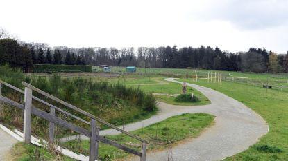 Ontdek Vlaanderens allereerste multimovepad aan onthaalzone De Torenvalk