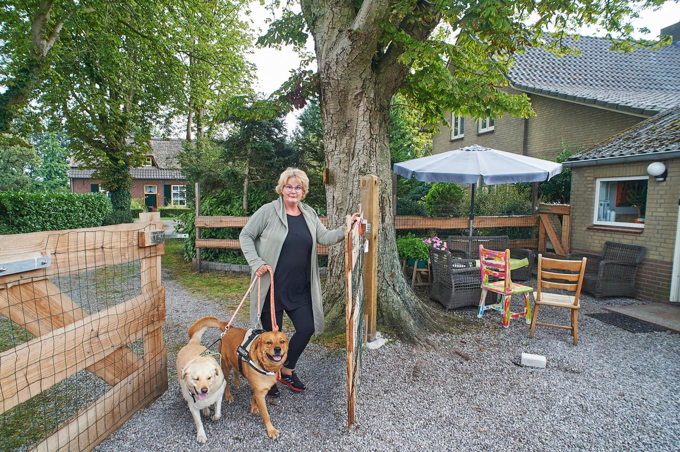 Kunstenares Floor Veerkamp is neergestreken in het Nabbegat in Zeeland, drie kilometer van de natuurbegraafplaats.