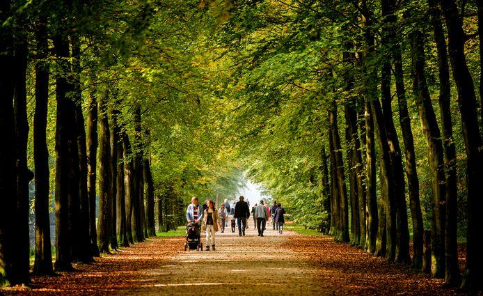 Wandelen in Twente.