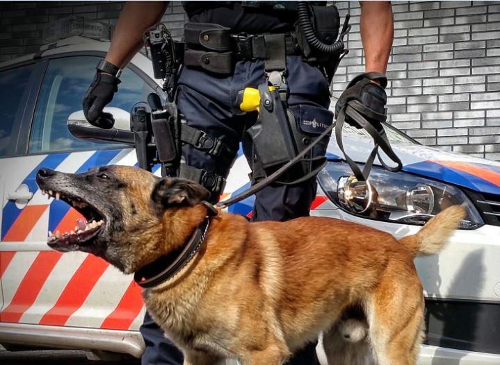 Ondanks dreiging met de hond wilden de jonge inbrekers niet tevoorschijn komen.