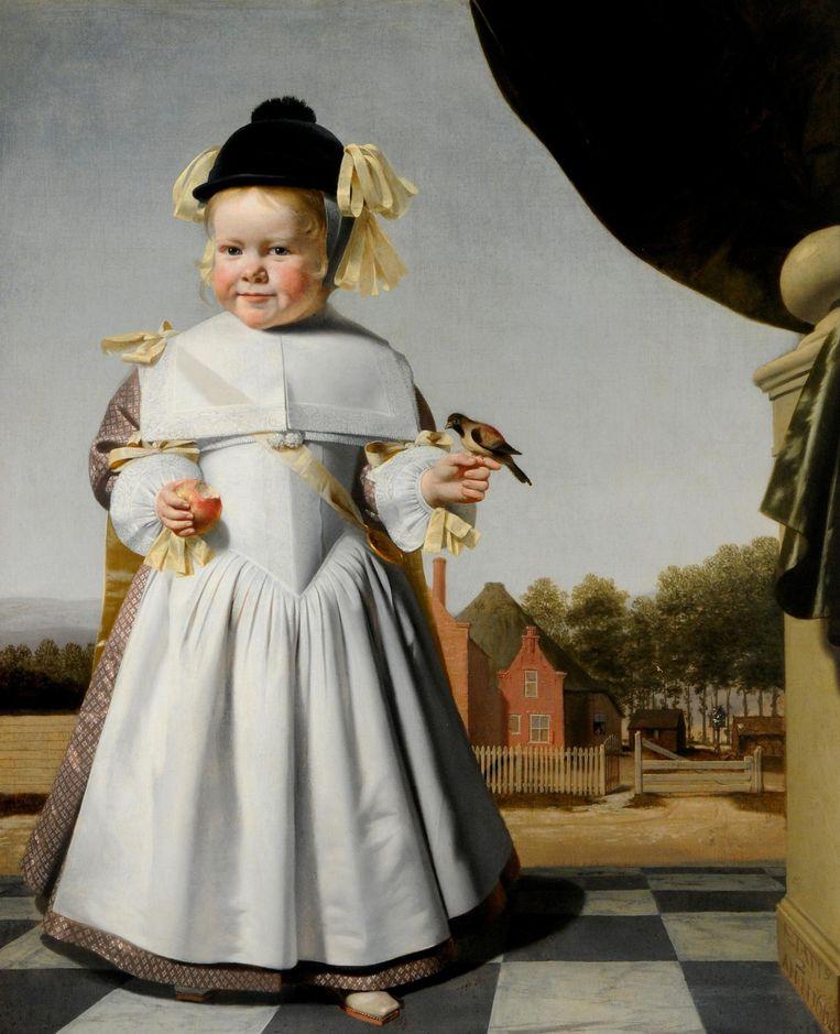 Caesar van Everdingen - Portret van een tweejarige jongen - 1664, olieverf op doek, 100 x 84 cm Beeld null