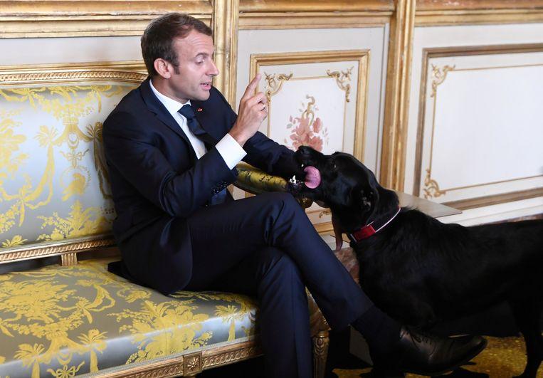 De Franse president roept zijn hond Nemo tot de orde. Beeld REUTERS