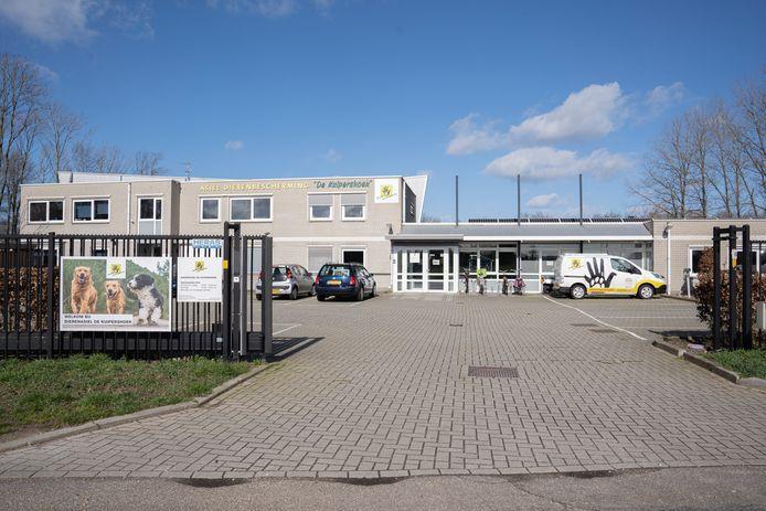 Dierenasiel de Kuipershoek in Klarenbeek is voorlopig gesloten voor bezoekers.
