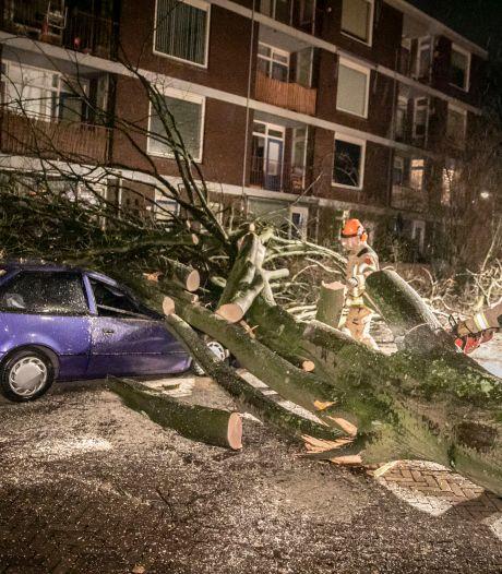 Omgewaaide bomen en verkeershinder door storm Christoph