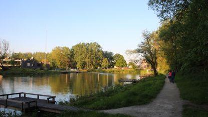 """Ondanks hitte is zwemvijver geen optie: """"Visvijver domein Steenberg niet geschikt en gevaarlijk om te zwemmen"""""""