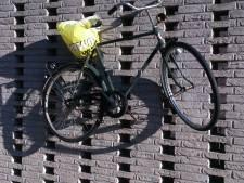 Op eenzame hoogte aan het Burchtplein in Etten-Leur