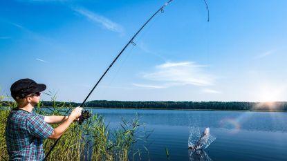 Tijdelijk visverbod voor Zwalmbekken