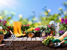 De tuin in dit weekend? Veertien tips waarmee je nu al aan de slag kunt