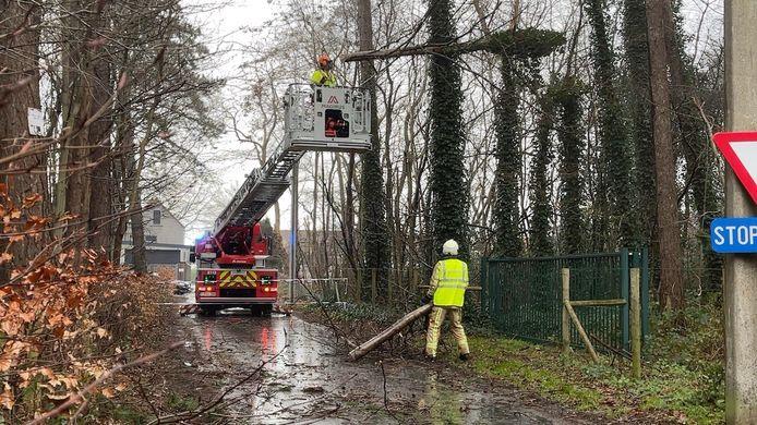 De brandweer kwam ter plaatse in Sijsele