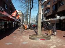 Stalen boombakken in de binnenstad van Eindhoven