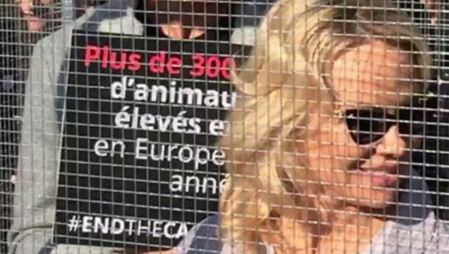 Pamela Anderson enfermée dans une cage