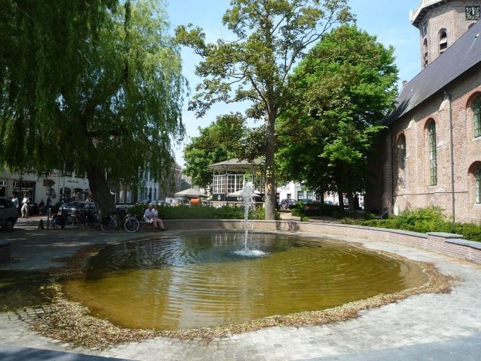 Groede. foto Willem Staat