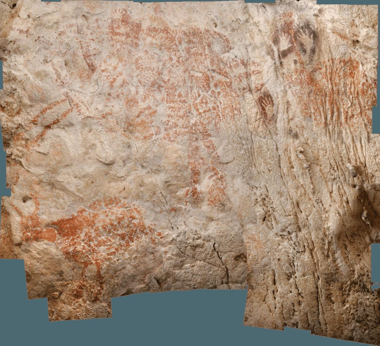 Dierentekening in een grot in Borneo is de vroegst bekende 'kunstuiting' van de mens tot nu toe