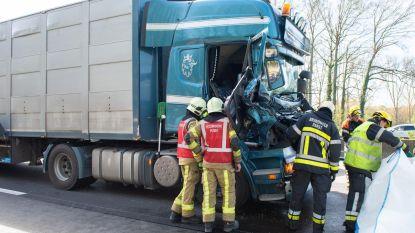 Twee gewonden na ongeval met vrachtwagens