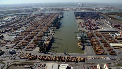 Weyts verrast met nieuw voorstel voor uitbreiding Antwerpse haven