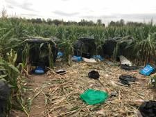 Albanees tentenkamp in maisveld bij Zevenbergschen Hoek