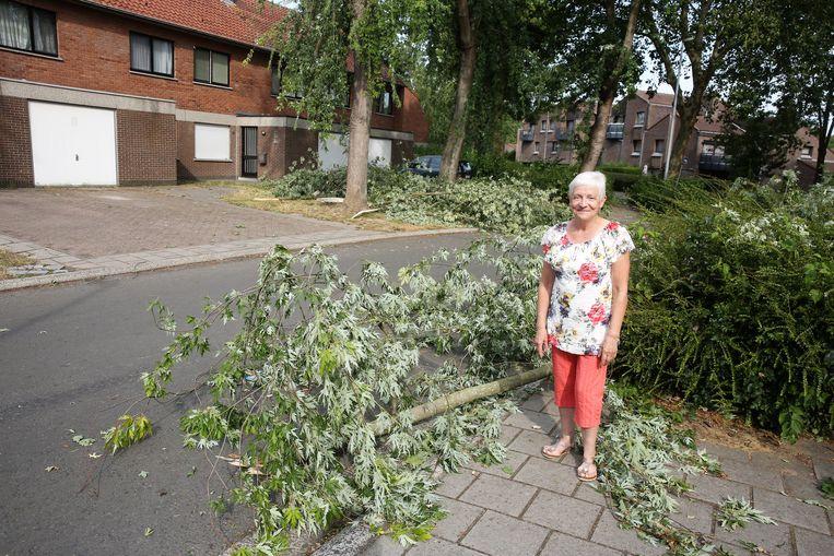 Bewoonster Monique De Smedt meet de schade op in haar wijk Windmoleken.