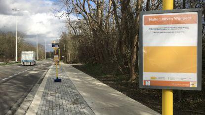 Tweede bushalte 'Leuven Wijnpers' na de krokusvakantie in gebruik