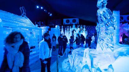 Sint-Truiden lonkt naar IJssculpturenfestival, nu Brugge afhaakt