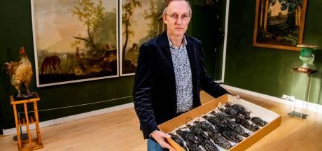 Doodsoorzaak spreeuwen blijft misschien voor eeuwig mysterie