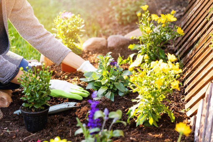 Waar we het liefst de tuinhandschoenen voor aantrekken? Vooral om het gras te maaien, te snoeien of de tuin (opnieuw) aan te leggen.