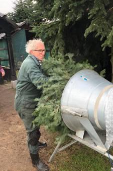 De kerstboom erin voordat Sint weg is, kan dat?