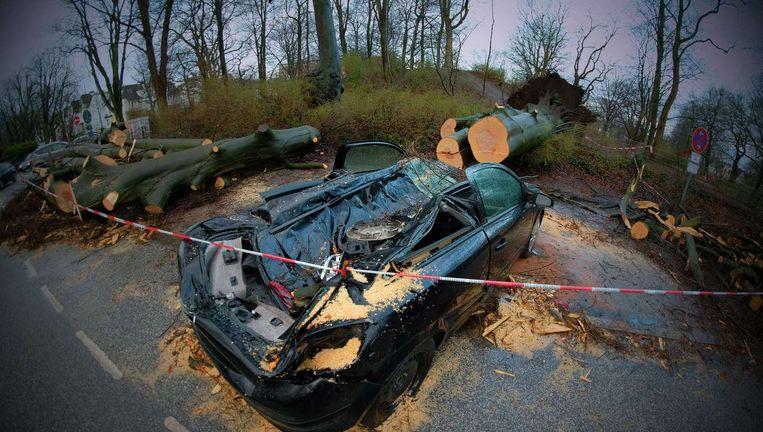 Een door de storm omgevallen boom verwoestte een auto in het Duitse Hamburg. Beeld anp