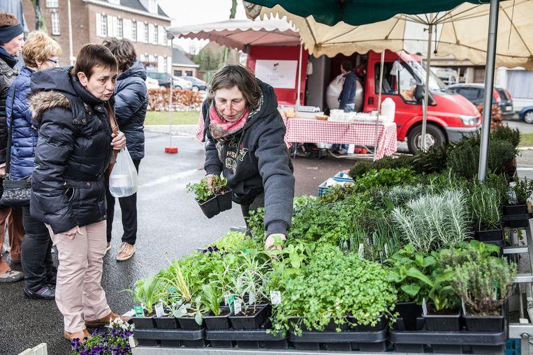 Een klant kiest kruidenplantjes op een boerenmarkt.