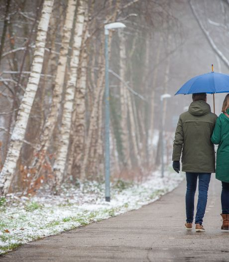 Drukte in de Hatertse en Overasseltse Vennen: nog snel genieten van de sneeuw, voor het weg is