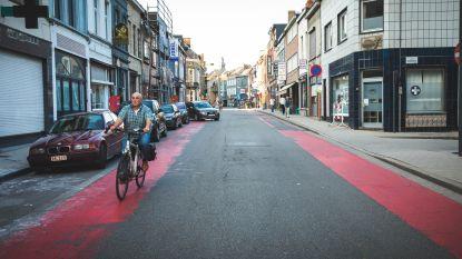Lichte geurhinder door aanbrengen fietssuggestiestroken in Processieweg