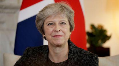 Theresa May neemt onderhandelingen brexit over