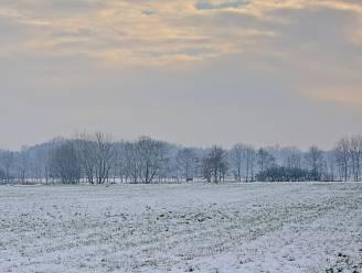 Mogelijk flink pak sneeuw op komst in nacht van zondag op maandag