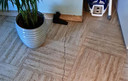 Scheur in de vloer bij de familie Hordijk in Poortugaal. Ook in de muur ontstond dit jaar plots een scheur.