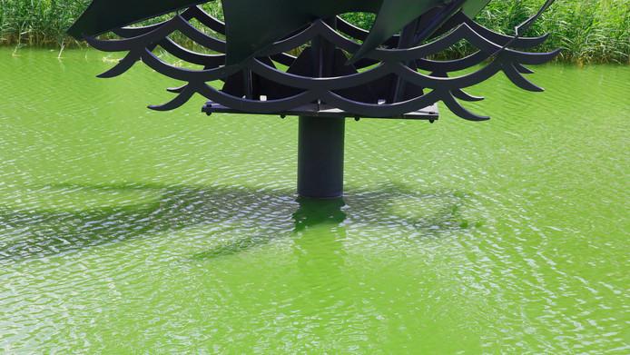 Het water in de oude oostelijke kanaalarm aan de Herengracht is zo groen als gepureerde erwtensoep.