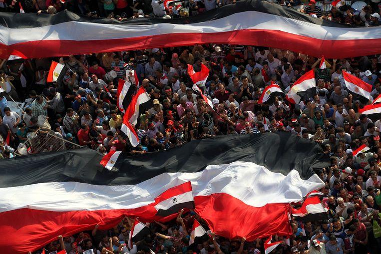 Demonstranten met een enorme nationale vlag. Beeld null
