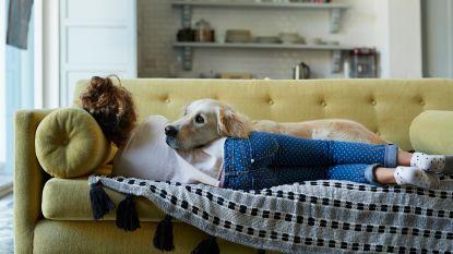 Vrouwen slapen beter naast hun hond dan naast hun partner