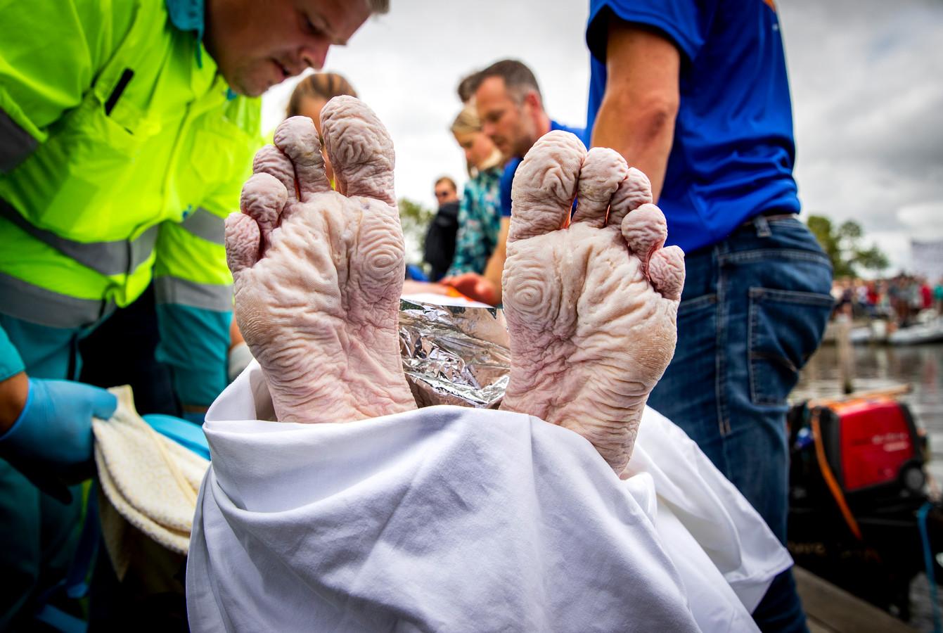 Maarten van der Weijden heeft zijn zwemtocht langs elf Friese steden na 37 kilometer voor de finish moeten staken.