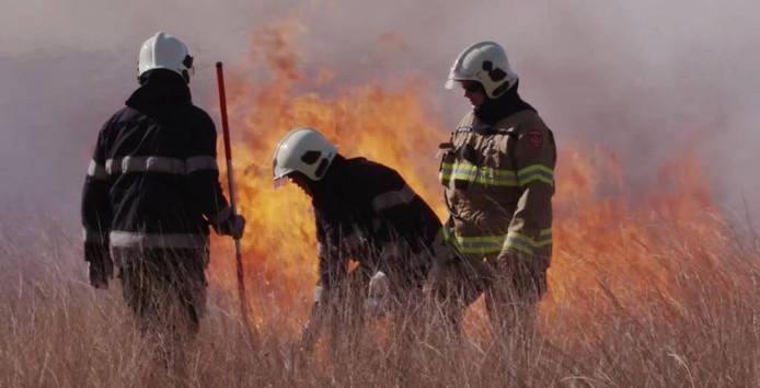 De brandweer in actie bij het afbranden.