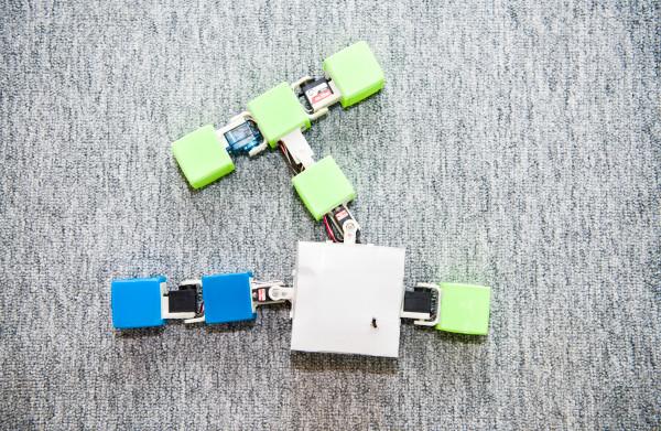 De robotevolutie kan beginnen. Hoe? Moeder Natuur vervangen door virtuele kraamkamer