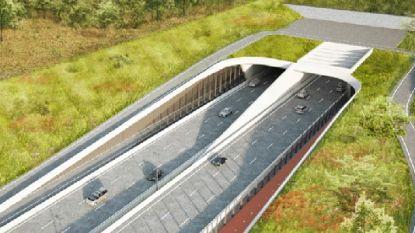 Fietsers krijgen meer plaats in Scheldetunnel